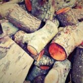 Výhřevnost dřeva