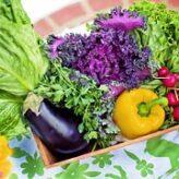 Zdravá a vyvážená strava